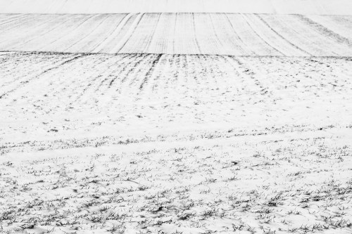 Beuster_Winter (20 von 26)