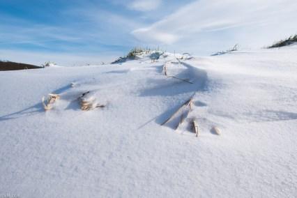 Beuster_Winter (3 von 26)