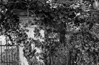 Wrisbergholzen (14 von 58)