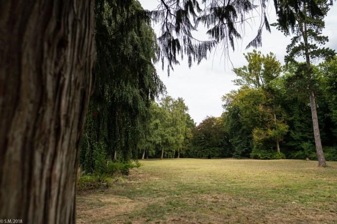 Wrisbergholzen (21 von 58)