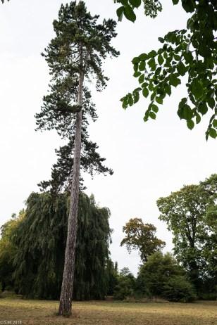 Wrisbergholzen (25 von 58)