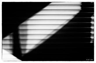 Fujilux_23mm_8