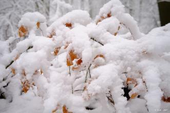 Schnee-Diekholzen_3