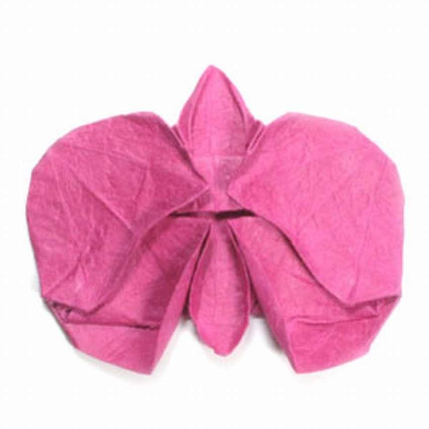 цветок орхидеи оригами