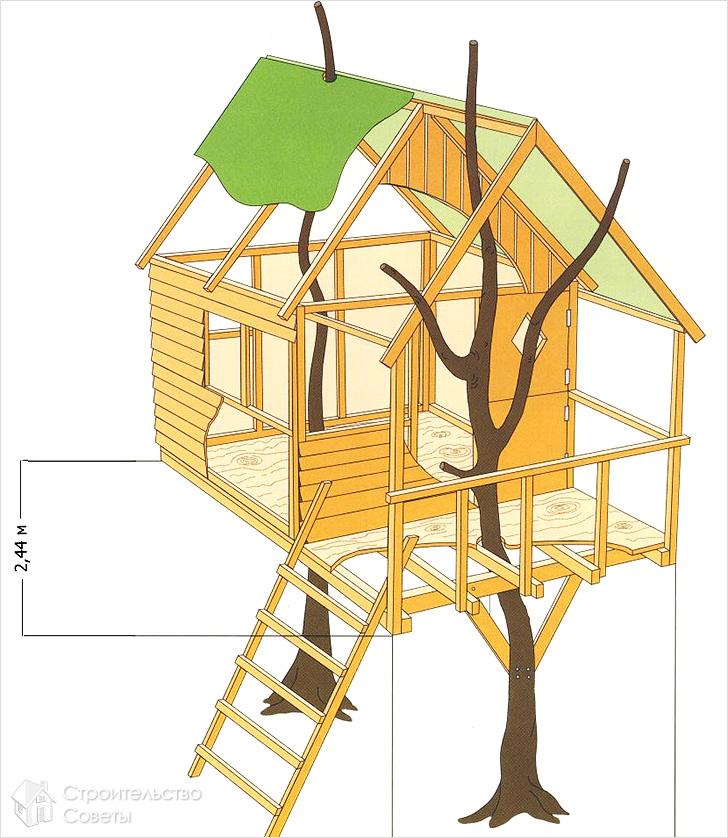 Đề án Dimka trên cây