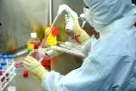 La UAL sigue mejorando en investigación y consigue más fondos y nuevas herramientas