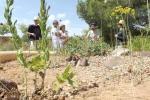 La Residencia de Tiempo Libre de Aguadulce acoge el sábado una jornada sobre arboricultura