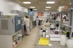La Junta de Gobierno da luz verde a la ampliación en un 20% del presupuesto para el suministro de patrones de plaguicidas para el Centro Universitario Analítico Municipal