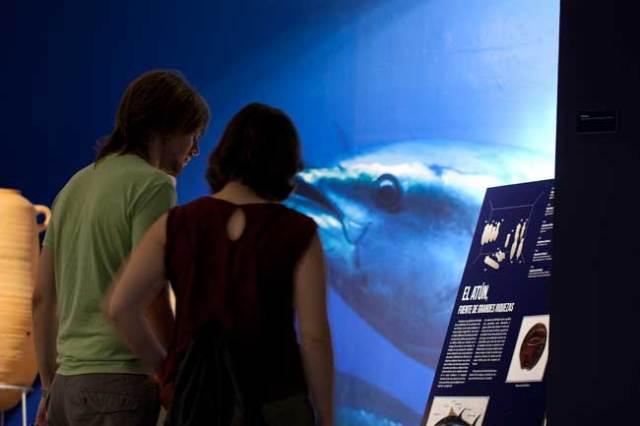 arqueologia-subacuatica-museo-almeria