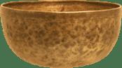 logo-bowl