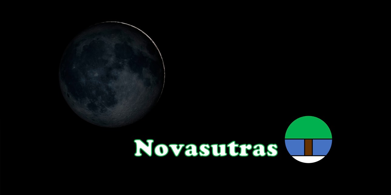 This image has an empty alt attribute; its file name is newmoonnslogo2160x1080pxeventbrite.jpg