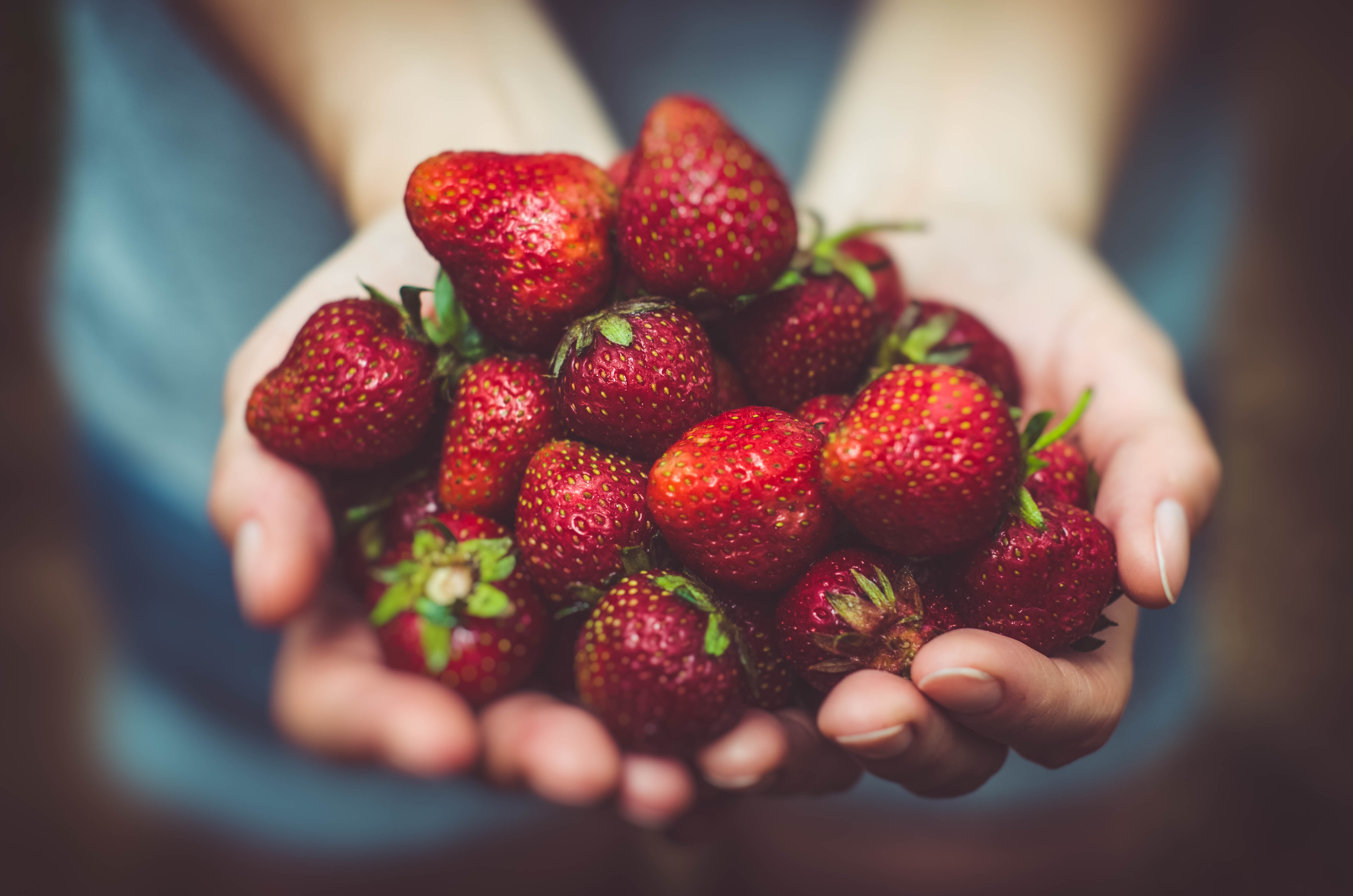 Photo of person offering a gift of strawberries, by Artur Rutowski, via Unsplash.