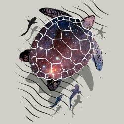 kornjaca