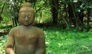 buddha-196334c