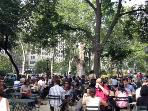 shake shack madison square nova york e voce 1
