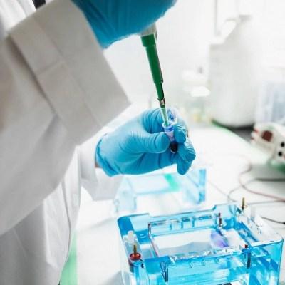 Allegro Taq PCR Core KIT