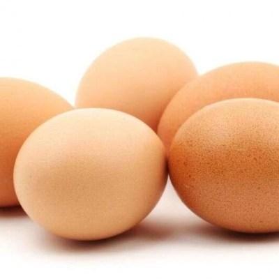 Wykrywanie antybiotyków w jajach
