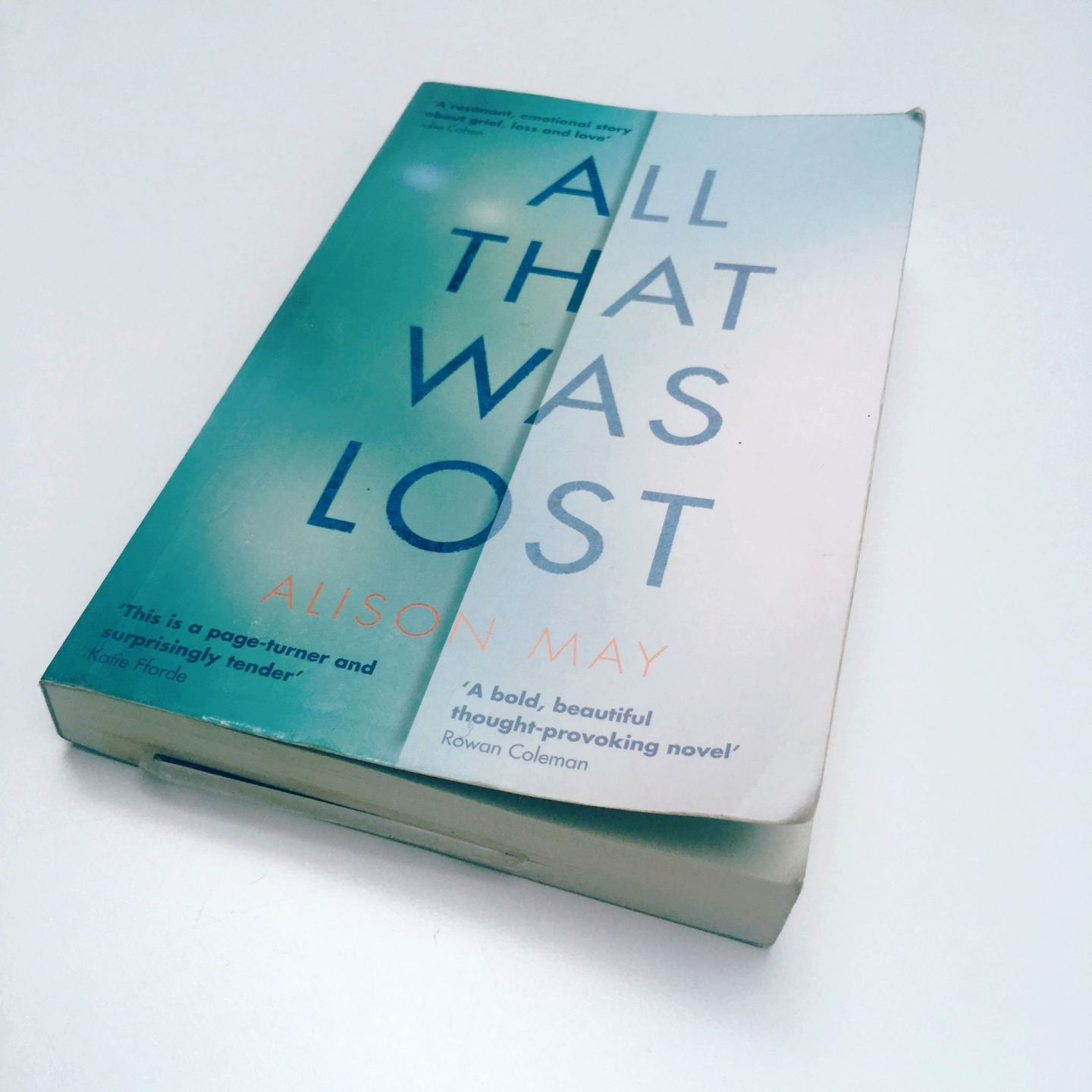 Blog Tour: All That Was Lost