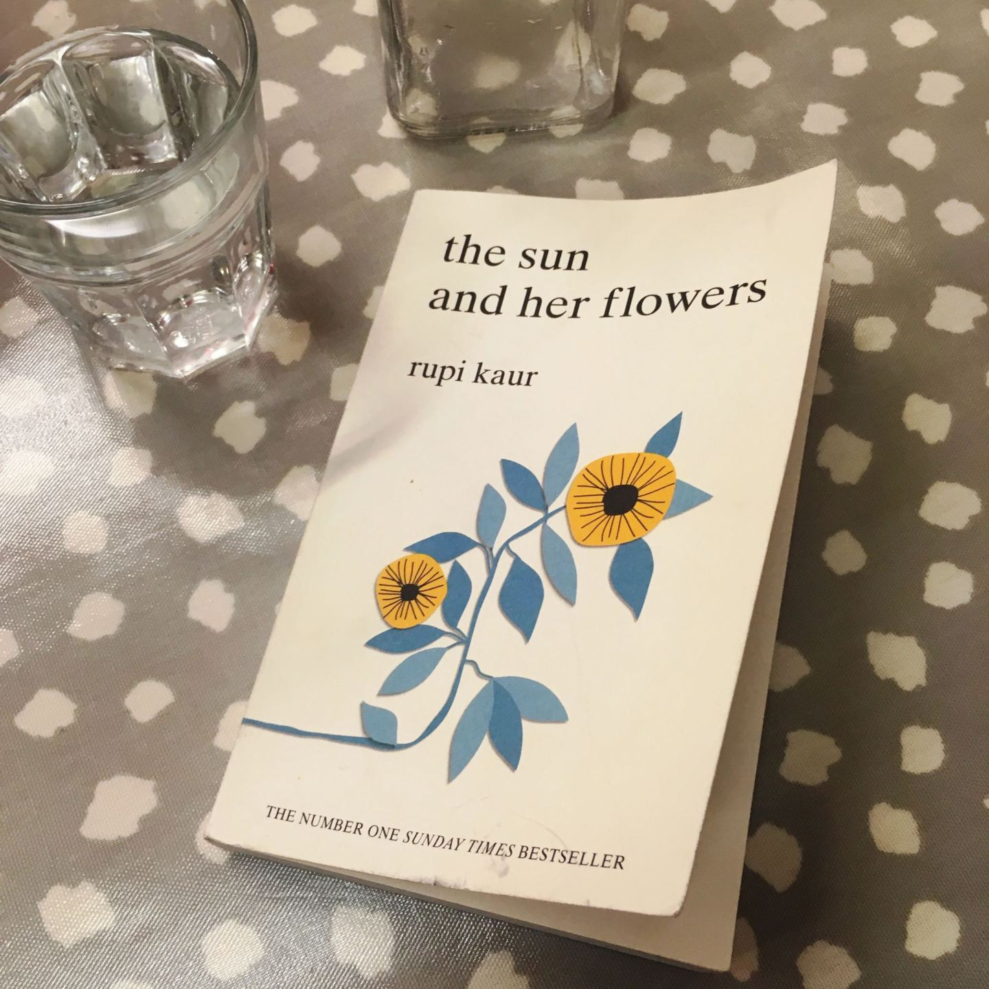 The-Sun-and-Her-Flowers