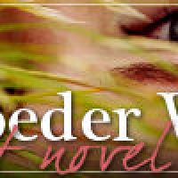Book Review: The Day Before by Lisa Schroeder