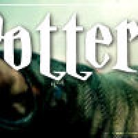 2011: The Year We Said Good-Bye to Harry Potter (sort of)