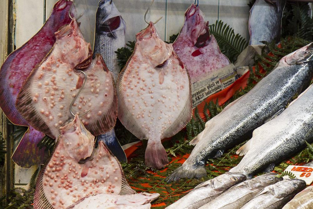 Fish Market near Taksim Square, Istanbul, Turkey