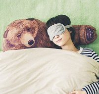 Witty Novelty Bear Hug Pillows  Novelty Gift Ideas