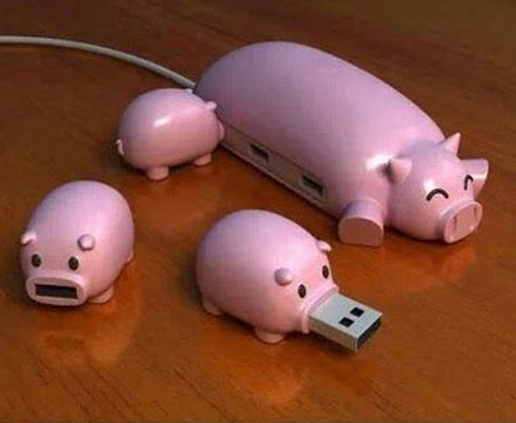 Piggy USB Hub