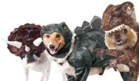 Animal Planet Dinosaur Dog Costumes - NoveltyStreet