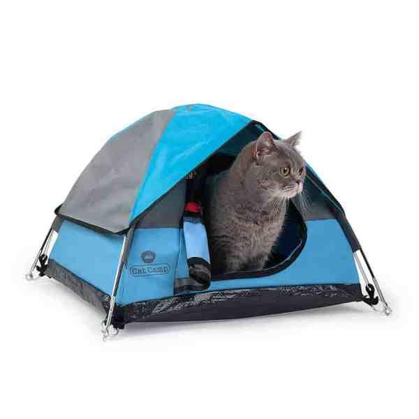 Cat Camp Tent - Noveltystreet