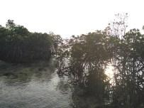 Pulau Mubut Darat 3