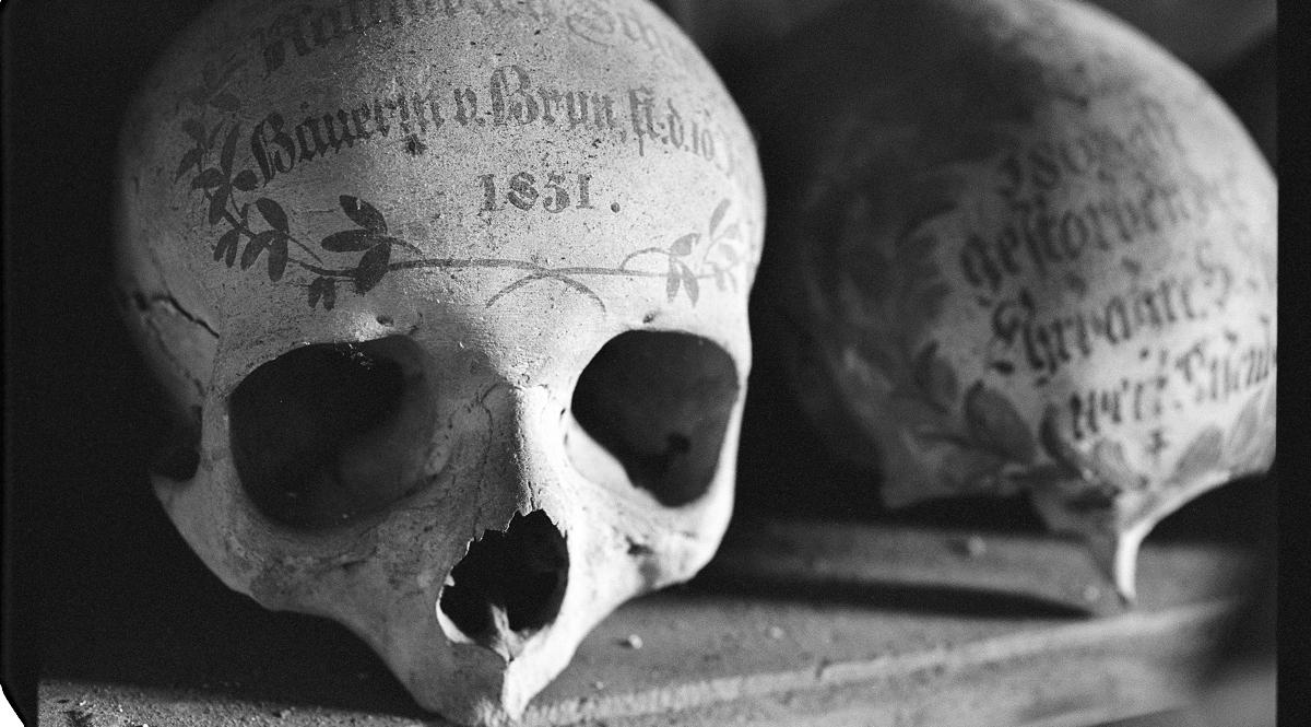 Skull Relic noviembre Nocturno