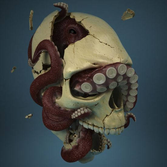 fractured skull by Pavel Budnik