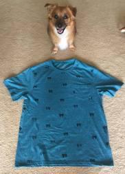 shirt-and-dog