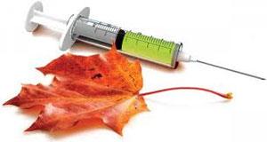 Друга хвиля COVID-19,чотири види грипу і вакцинація – виклики осіннього сезону