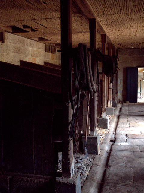 The stables were built to house just 13 horses