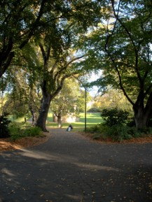 Saint Davids Park