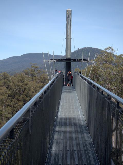 The Tahune Airwalk near Geeveston, Tasmania