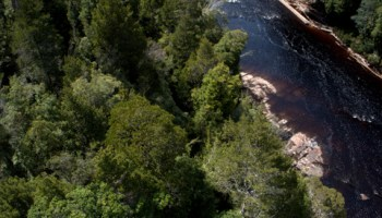 The Huon River from the Tahune Airwalk