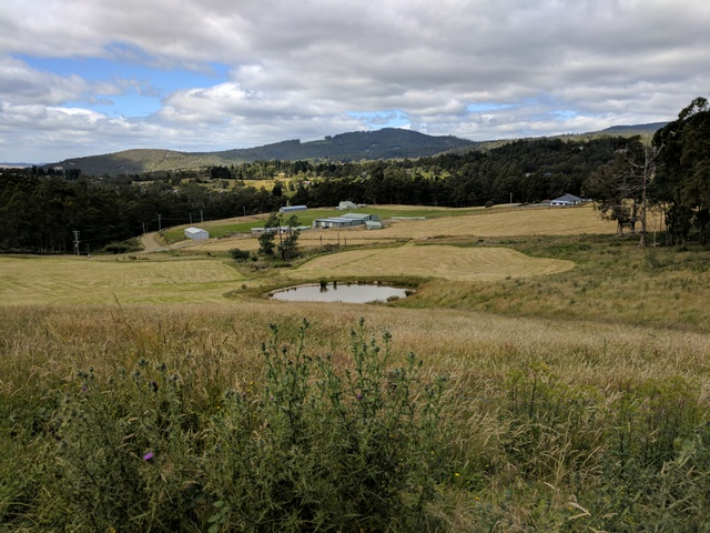 The view from the top of Lawless Road near the start of the Kaoota Tramway, looking downhill across farmland towards Nierinna Creek