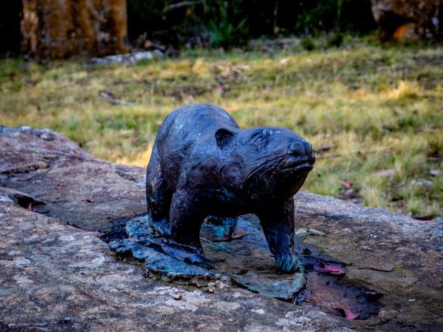Wombat - Steppes Sculptures by Stephen Walker