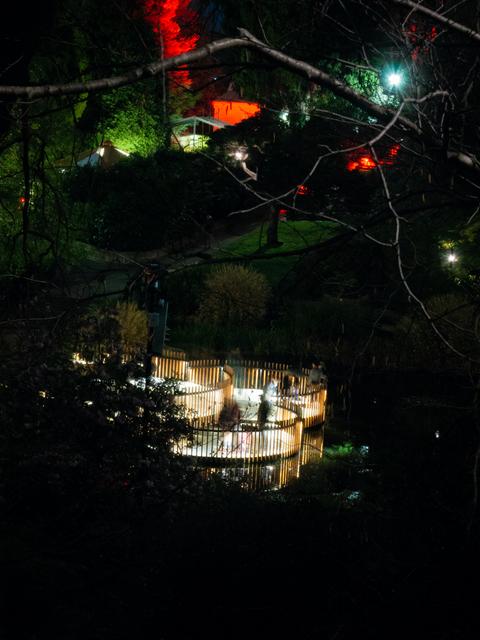 Observation decks at the lily pond, Royal Tasmanian Botanical Gardens