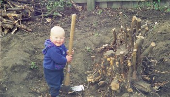 My nephew Alex, aged about 2 years, 'helping' me dig out the prunus root. He's now a strapping lad well into his twenties.