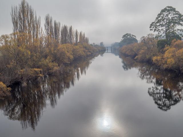 The River Derwent at Bushy Park under a Bridgewater Jerry fog