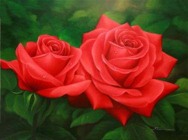 High Quality Roses: Red Rose