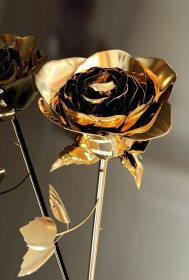 gold roses hd wallpapers parallax rose aesthetic flowers golden