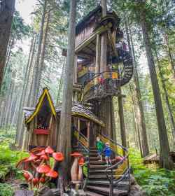 treehouses canada forest enchanted dream tree treehouse houses cbc bc amazing across fairy boat revelstoke structures read