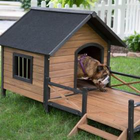 dog houses plans adorable ever boomer george porch skill levels diy most found amazon deck