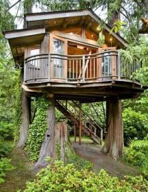 treehouse dreaming designs dream treehouses tree houses built trees dreams around