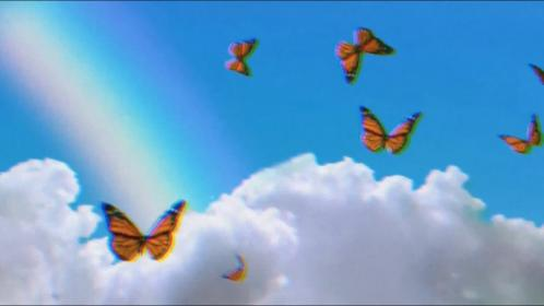 aesthetic butterfly intro template